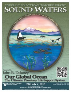 Survey 223_SoundWaters poster